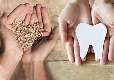 Von Reformhäuser bis Zahnärzte