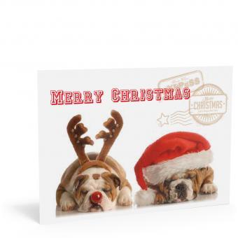 """Weihnachtskarte """"Hunde"""""""